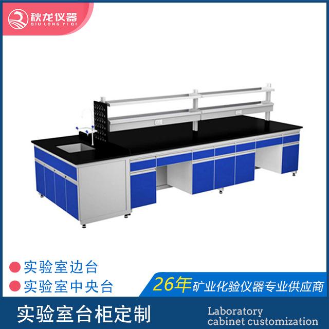 实验室台柜定制  中央台   边台   功能柜