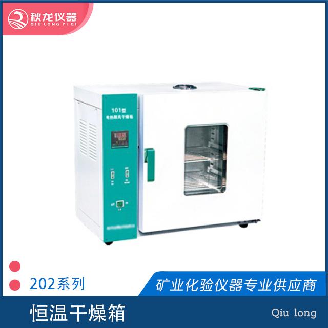 电热恒温干燥箱| 202系列