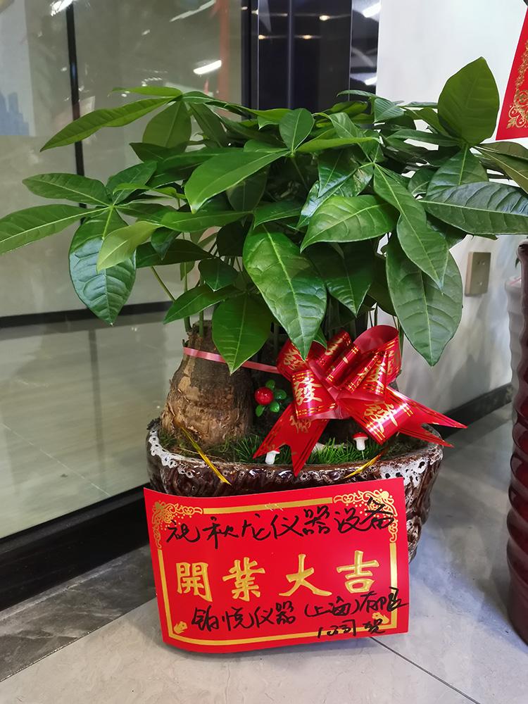 铂悦仪器(上海)有限公司,恭贺【秋龙仪器】乔迁之喜